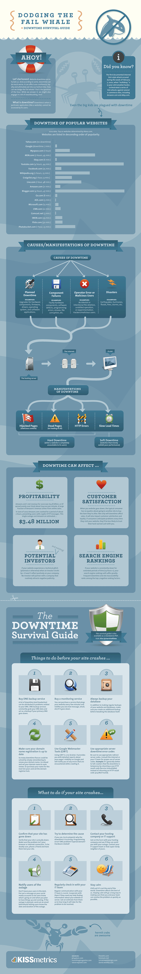 Website Downtime Survival Guide Infographic