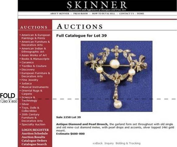 Skinner image b