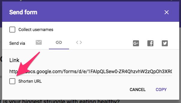 Audience Interest Survey Google Forms 10
