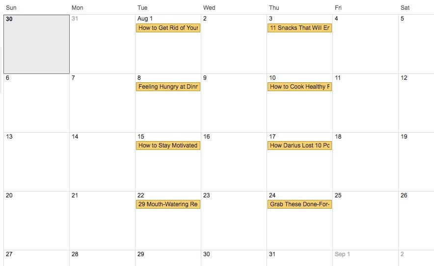 Google Calendar Month of Aug 2017 4