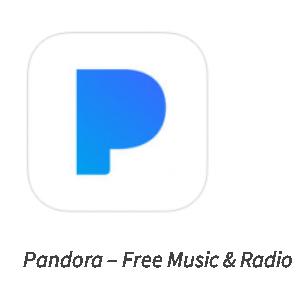Pandora iOS Icon