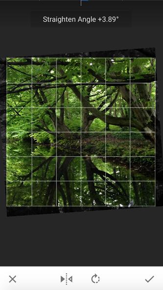 Photo in Snapseed Demo Google Photos 3