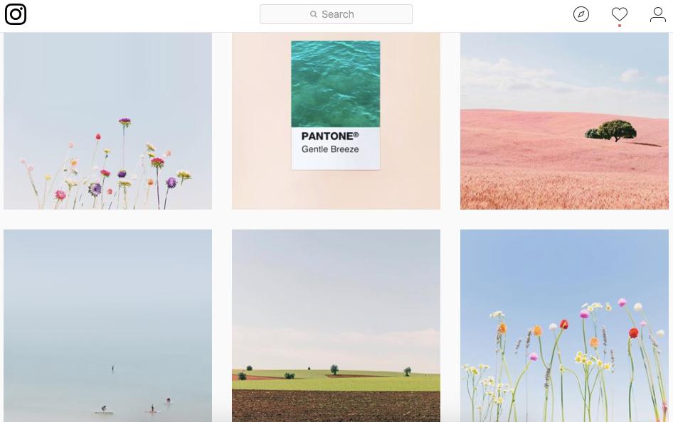 Teresa teresacfreitas Instagram photos and videos