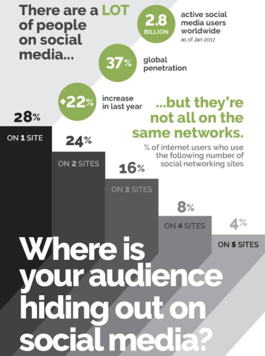 Top Social Network Demographics 2017 Infographic Social Media Today