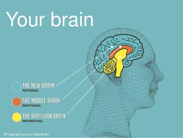 neuromarketing how to detect consumers gspot kivilcim kayabali salesbrain 6 638