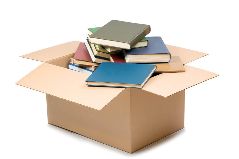 ilustraçao de caixa de assinatura de livros em fundo branco
