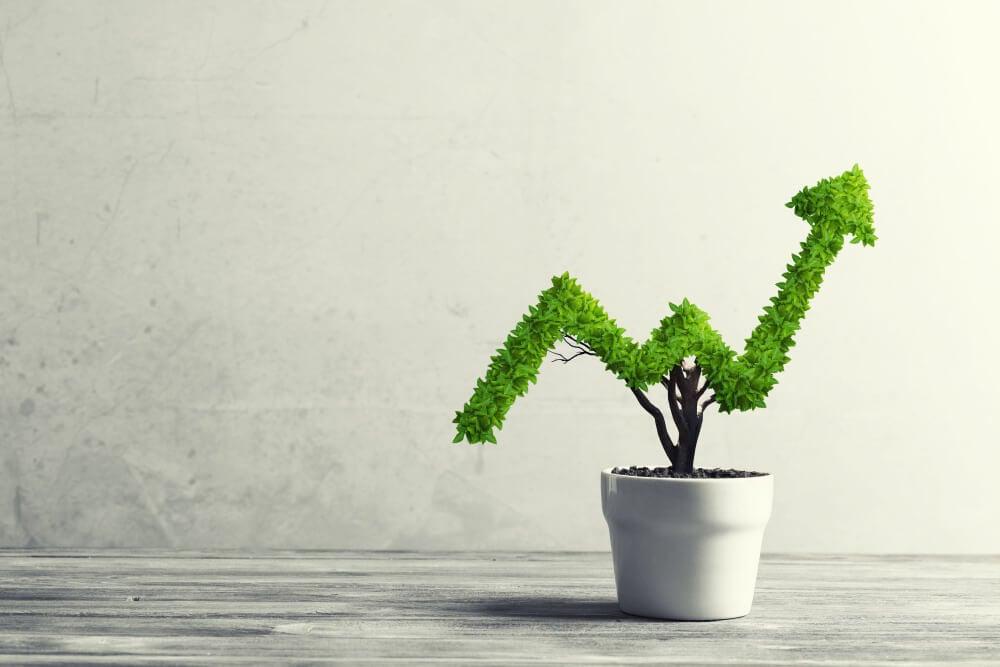 símbolo de crescimento como planta em vaso