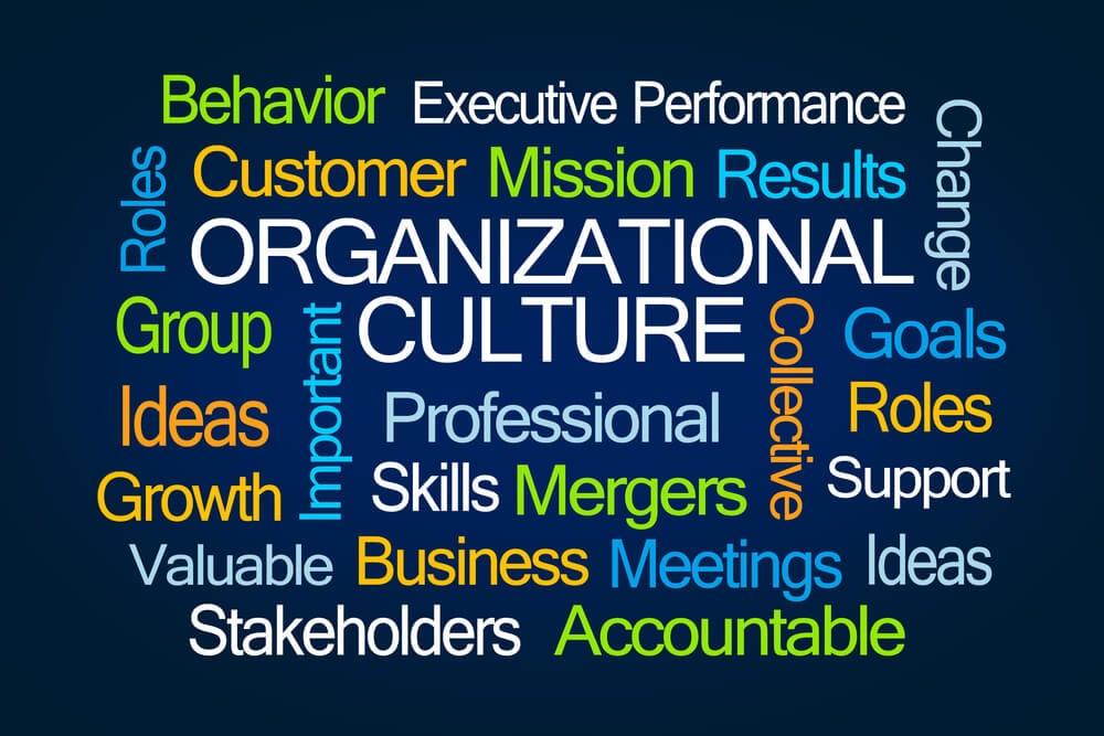 passos importantes para cultura organizacional da empresa