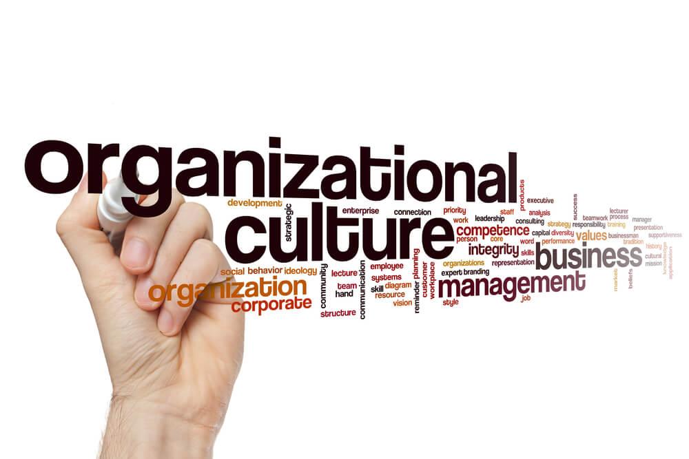 termos relacionados a cultura organizaconal