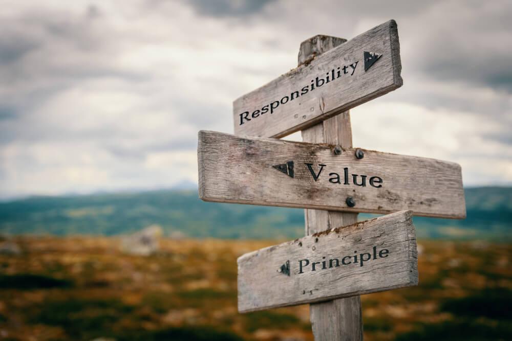 valores e passos importante a cultura organizacional
