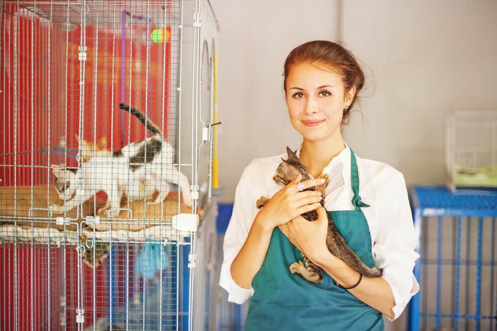 atendente de pet shop segurando pet ao lado de gaiola com gatos para doaçao