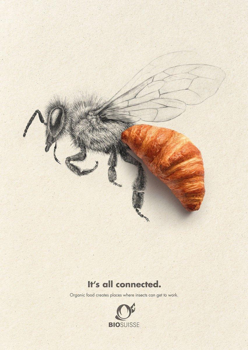 bio suisse campanha publicitária