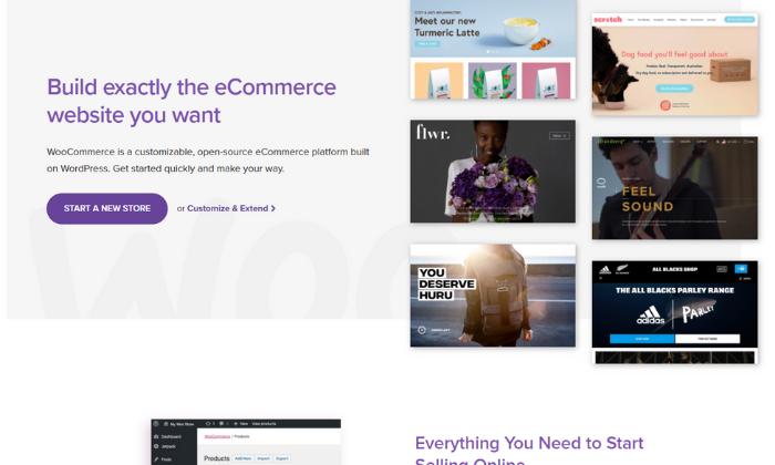 Best Ecommerce Platforms 6