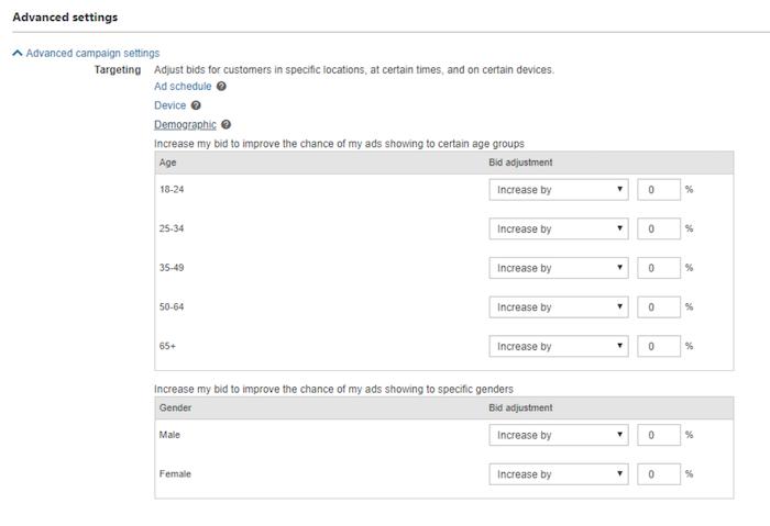 Bing Ads - Set Custom Demographics for Targeted Ads