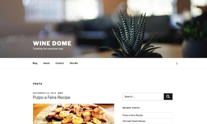Wine Dome theme example page for How To Build a WordPress Website