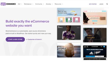 WordPress Vs. Shopify