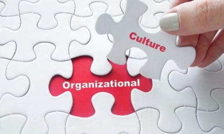 Tipos de Cultura Organizacional: Quais São e Como Identificar Cada Um
