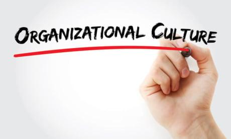 O Que é Cultura Organizacional: Tipos, Exemplos e Importância