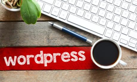 O Que é WordPress: Entenda Como Usar e Como Otimizar